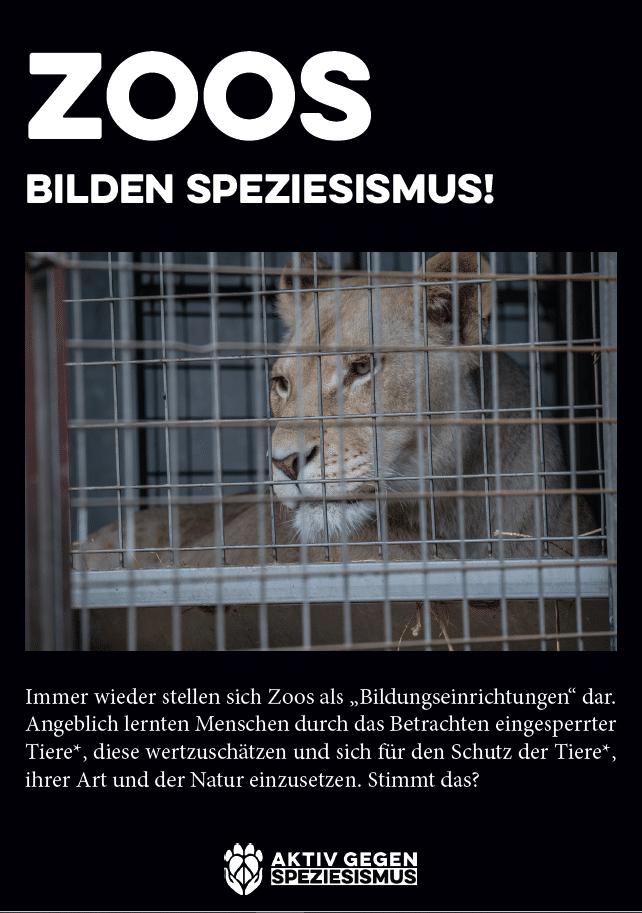 Zoo Fyler