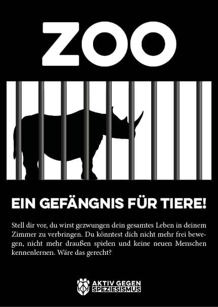 Zoo Flyer Kinder