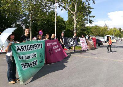 Protest gegen Zirkus Krone Aschaffenburg