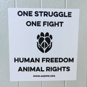 One struggle one fight Sticker